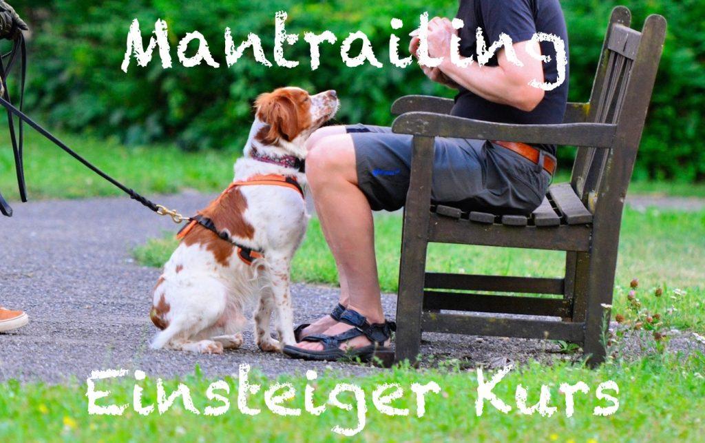 Mantrailing Einsteiger Kurs